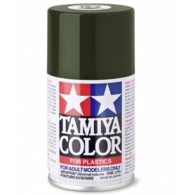 TS2 Vert foncé mat peinture spéciale ABS Tamiya